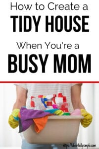 clean house tidy house pinterest pin