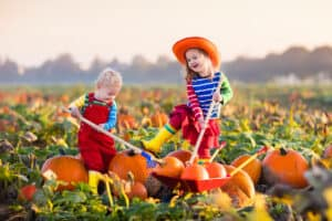 kids playing in the fall at the pumpkin patch