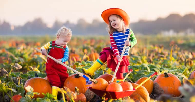10 Frugal Fall Activities to Do With Kids