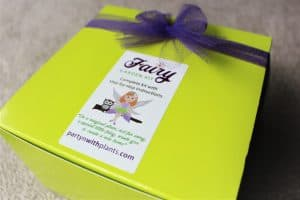 fairy garden kit box