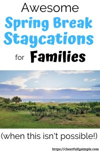 spring break staycation pinterest pin